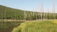 Jezioro w Parku Narodowym Yellowstone