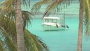 Palmy i przycumowana łódź na Malediwach