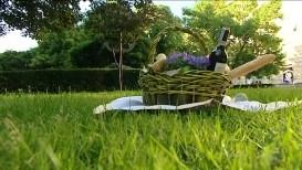 Kosz piknikowy na trawie